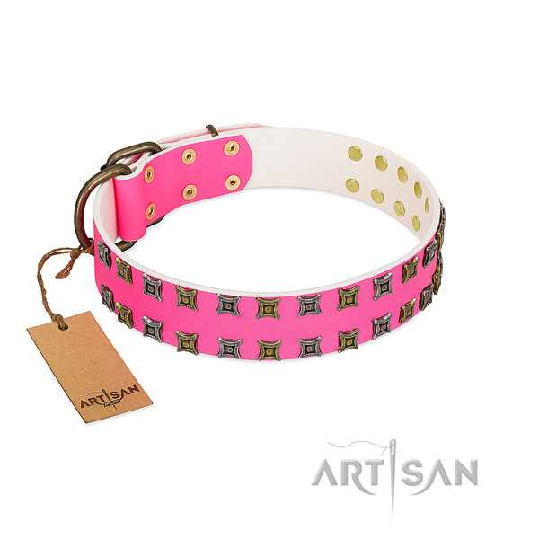 Full grain natural leather collar with extraordinary embellishments for your dog