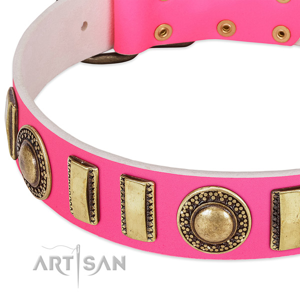 Reliable full grain leather dog collar for your lovely dog