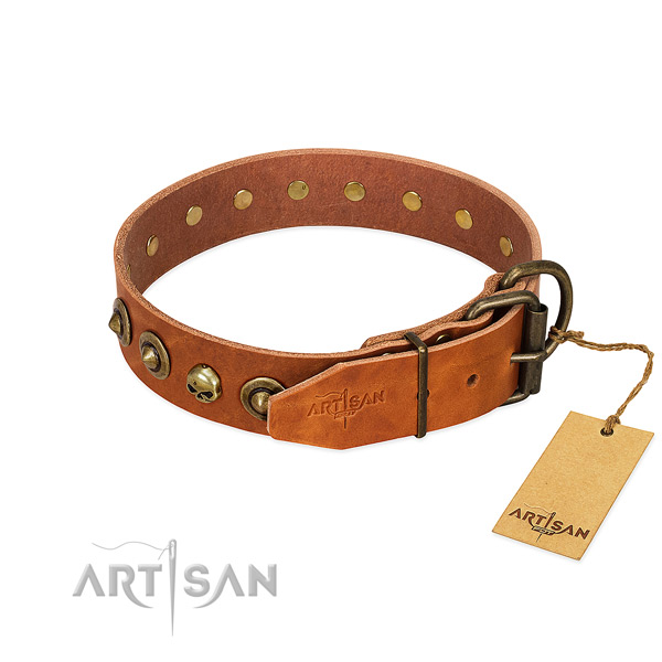 Genuine leather collar with stylish embellishments for your dog