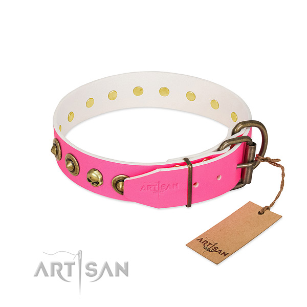Leather collar with exceptional adornments for your canine