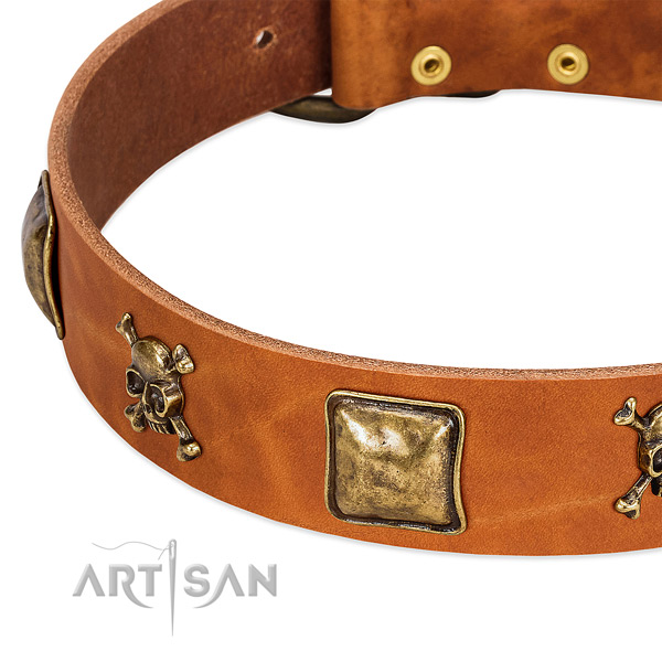 Fashionable decorations on full grain natural leather collar for your canine