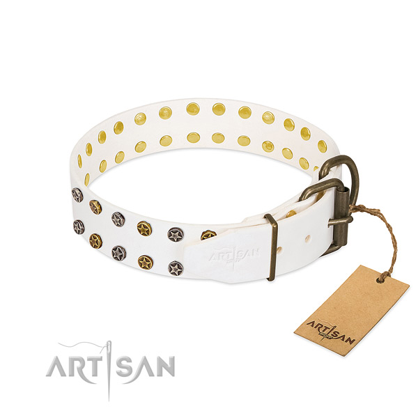 Full grain natural leather collar with amazing adornments for your four-legged friend