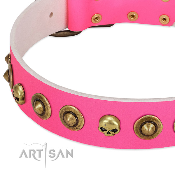 Stunning adornments on genuine leather collar for your dog