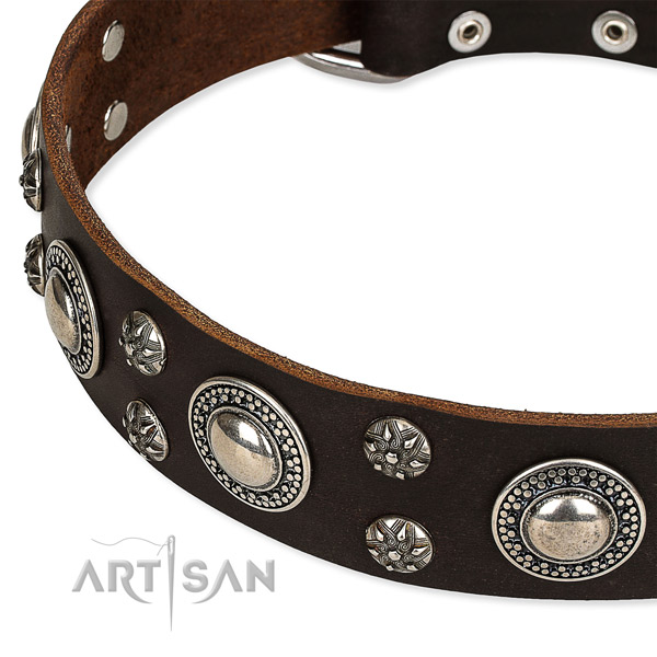 Easy to put on/off leather dog collar with almost unbreakable brass plated buckle and D-ring