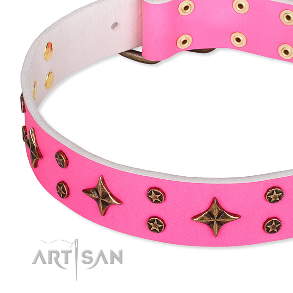 Full grain natural leather dog collar with amazing embellishments