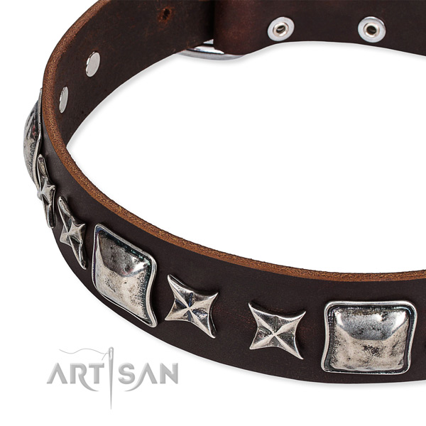 Natural genuine leather dog collar with embellishments for stylish walking