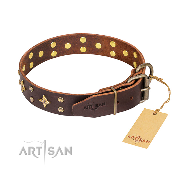 Everyday walking full grain natural leather collar with adornments for your doggie