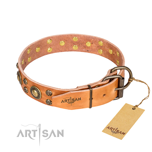 Stylish walking leather collar with decorations for your four-legged friend