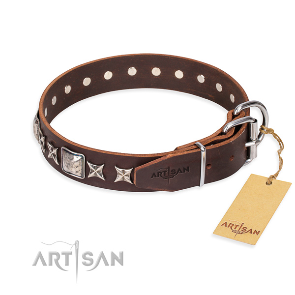 Stylish walking leather collar with embellishments for your canine