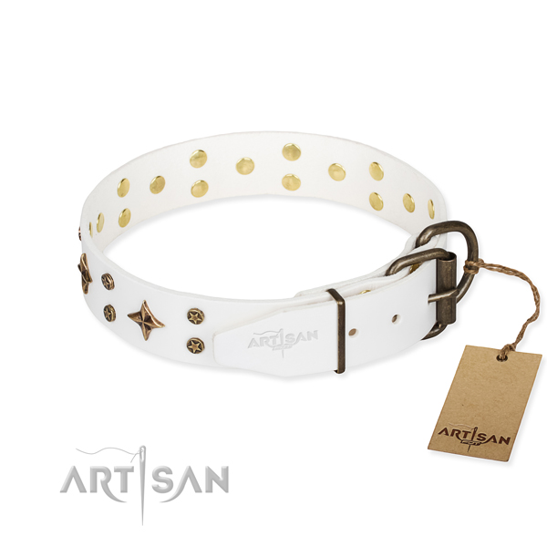 Daily use full grain natural leather collar with embellishments for your pet