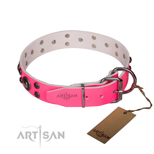 Everyday walking full grain natural leather collar with strong buckle and D-ring