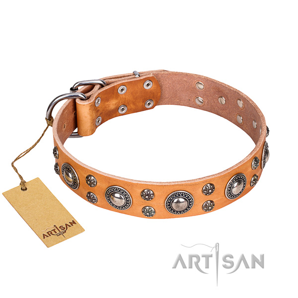 Awesome full grain genuine leather dog collar for daily walking