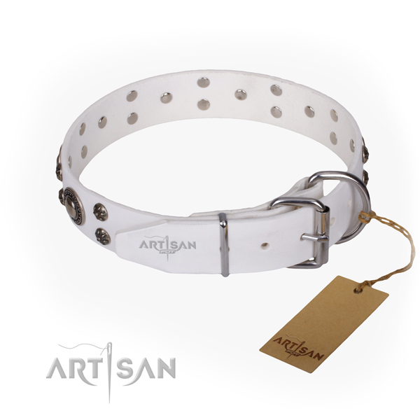 Everyday walking full grain leather collar with adornments for your four-legged friend