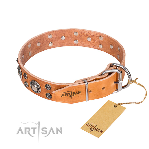 Stylish walking full grain genuine leather collar with studs for your pet