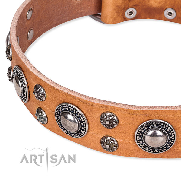 Everyday walking full grain leather collar with rust-proof buckle and D-ring