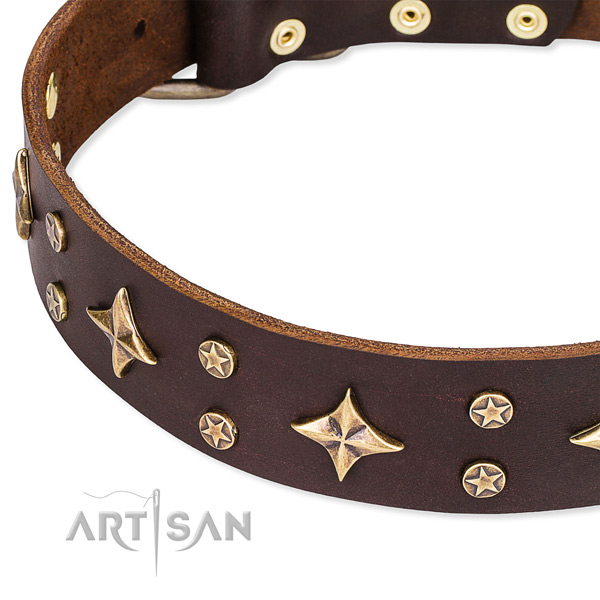 Full grain genuine leather dog collar with awesome adornments