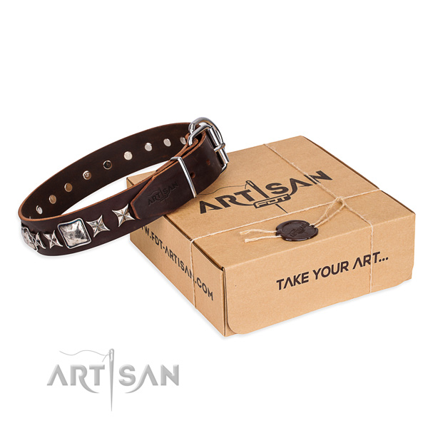 Adorned leather dog collar for daily walking