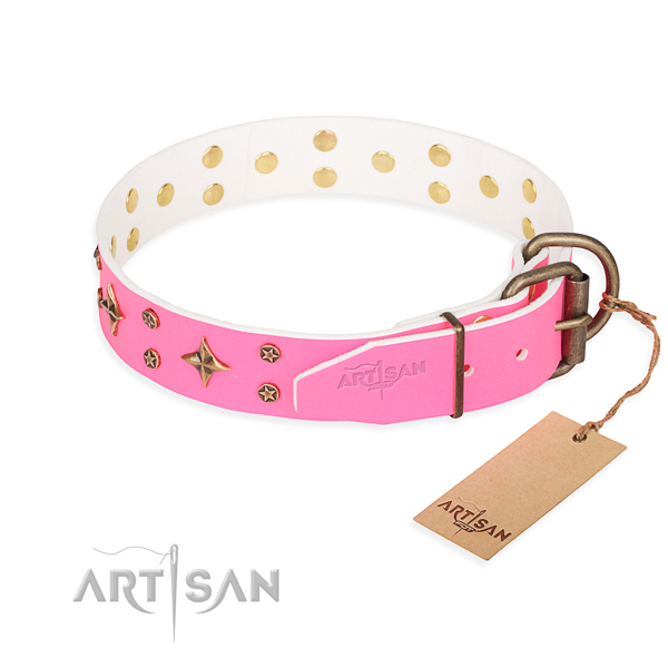 Everyday walking full grain natural leather collar with decorations for your dog