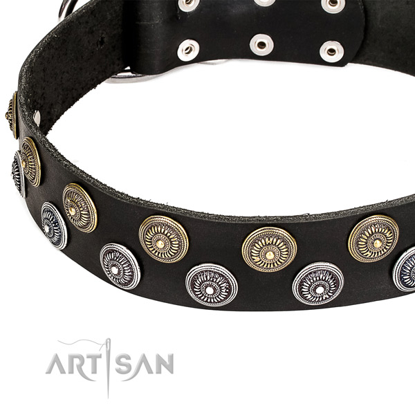 Natural genuine leather dog collar with extraordinary  embellishments