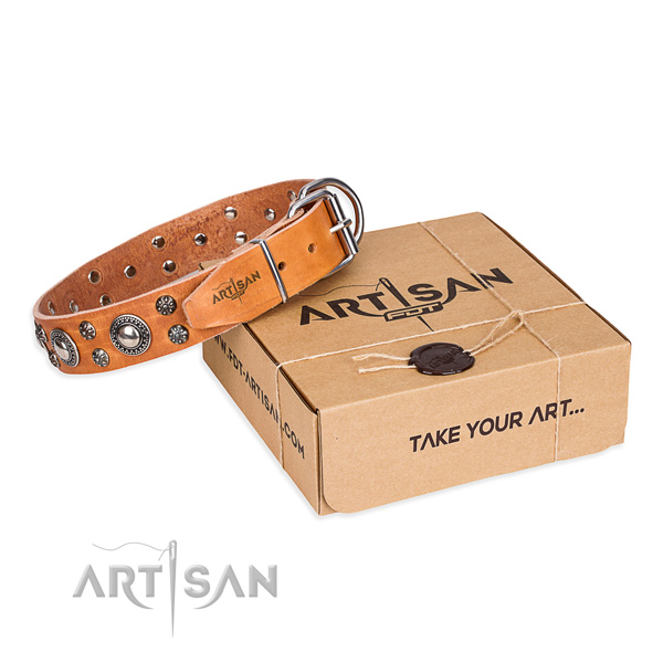 Awesome genuine leather dog collar for walking in style