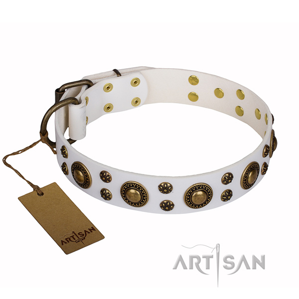 Everyday use full grain leather collar with embellishments for your pet