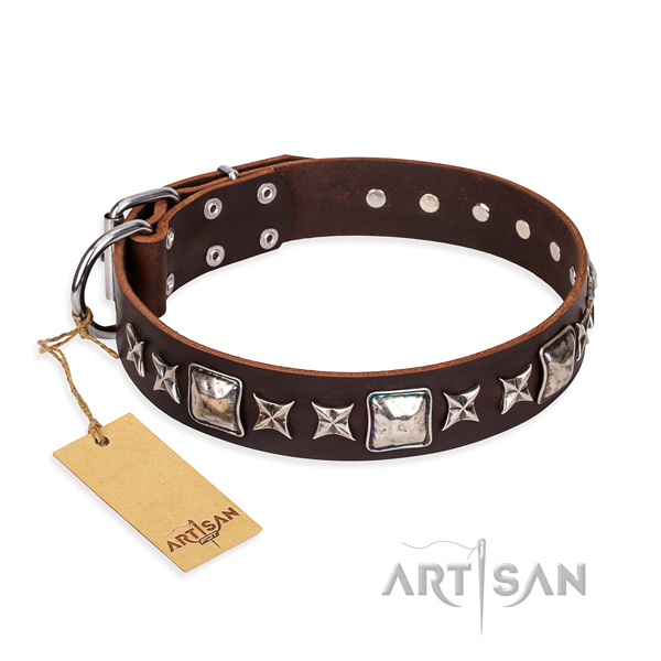 Significant full grain genuine leather dog collar for walking
