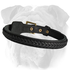 English Bulldog Braided Leather Collar Polished Edges