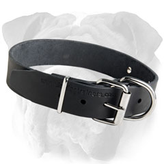 Non-Toxic Leather English Bulldog Collar