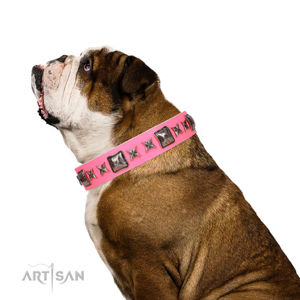 Awesome decorated genuine leather dog collar for comfy wearing