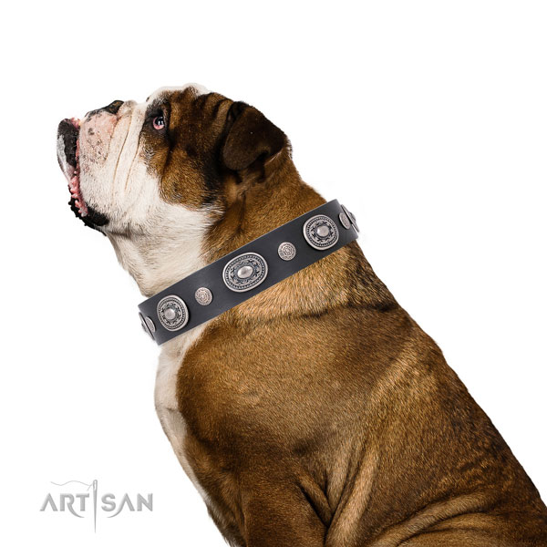 Corrosion resistant buckle and D-ring on leather dog collar for daily use