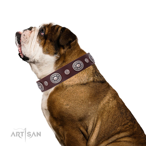 Durable buckle and D-ring on full grain leather dog collar for daily use