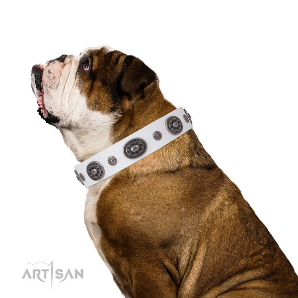 Natural leather dog collar with rust-proof buckle and D-ring for everyday use