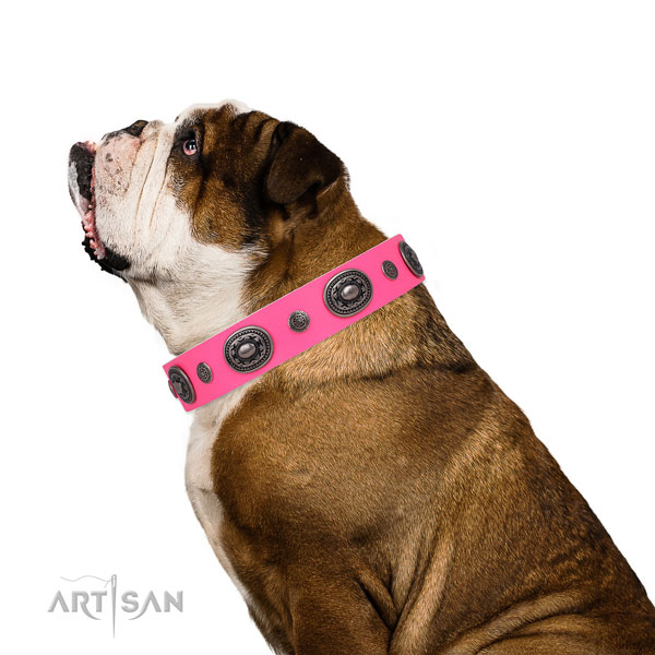 Leather dog collar with corrosion proof buckle and D-ring for daily use