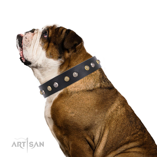 Full grain leather dog collar with durable buckle and D-ring for handy use