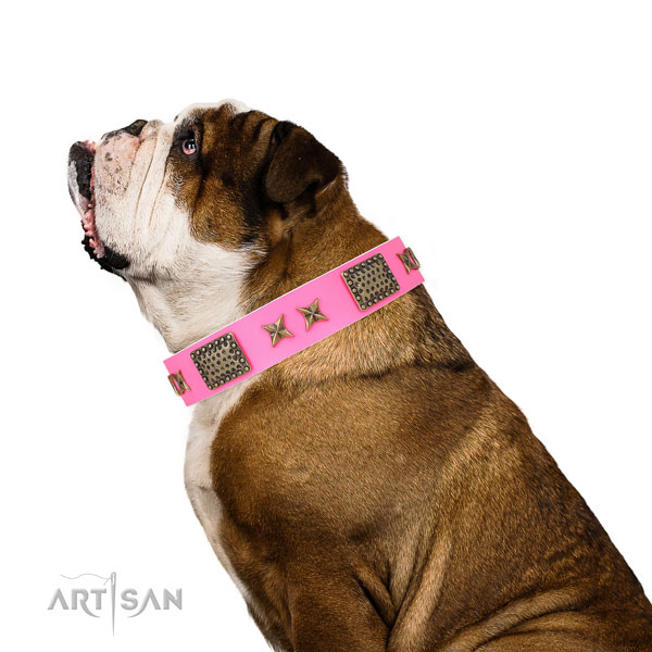 Unique studs on basic training genuine leather dog collar