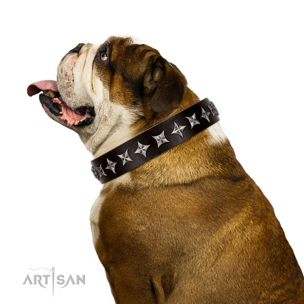 Comfortable wearing adorned dog collar of top quality leather