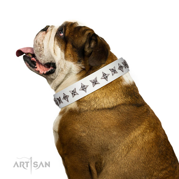 Durable full grain leather dog collar with stunning adornments