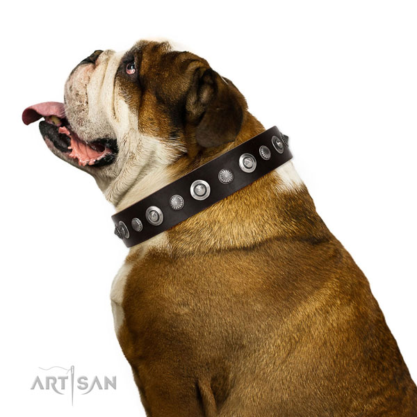 Durable full grain leather dog collar with inimitable decorations