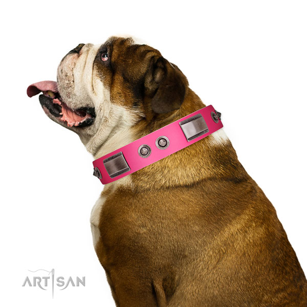 Top notch natural leather dog collar with adornments