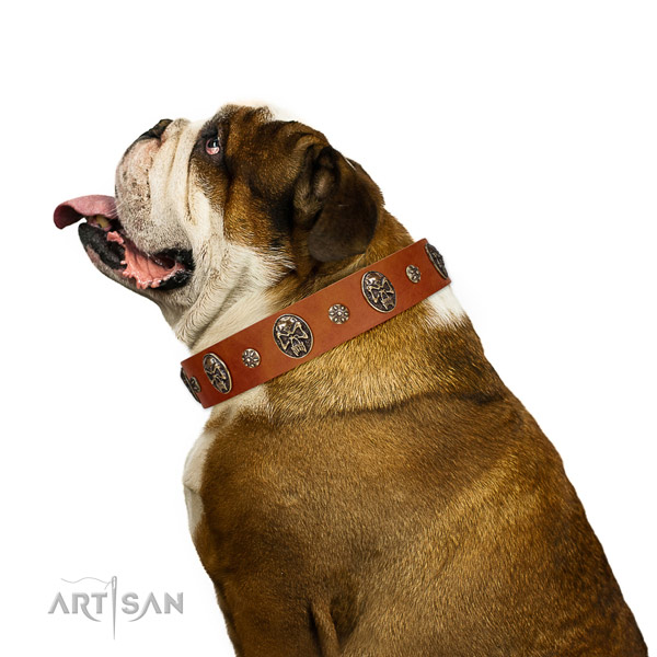 Basic training dog collar of genuine leather with top notch adornments