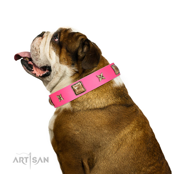 Full grain genuine leather dog collar of reliable material with incredible studs