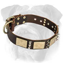 Hypoallergic Leather English Bulldog Collar