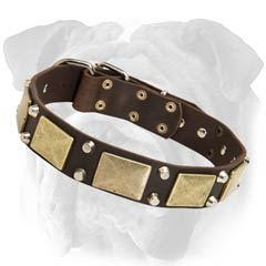 Non-Toxic Decorated Leather Collar for English Bulldog