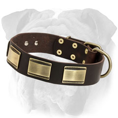 Plated Leather English Bulldog Collar