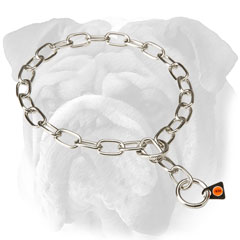 English Bulldog chain collar - stainless steel fur  saver