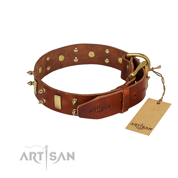 Natural leather dog collar with thoroughly polished finish
