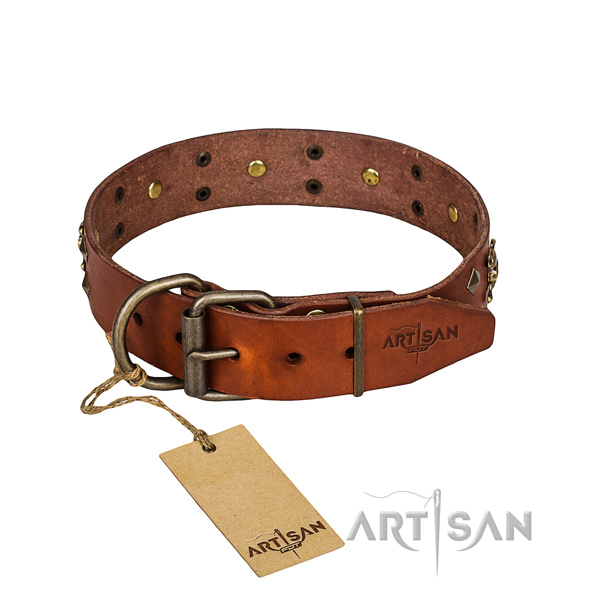 Dependable leather dog collar with rust-proof details