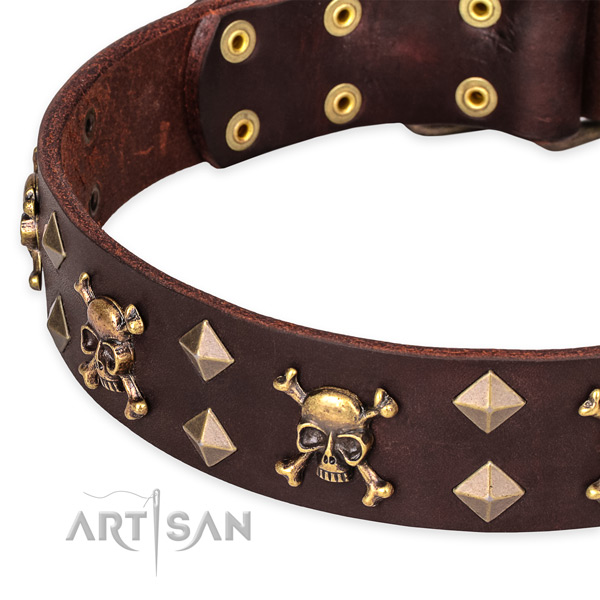 Everyday leather dog collar with incredible adornments