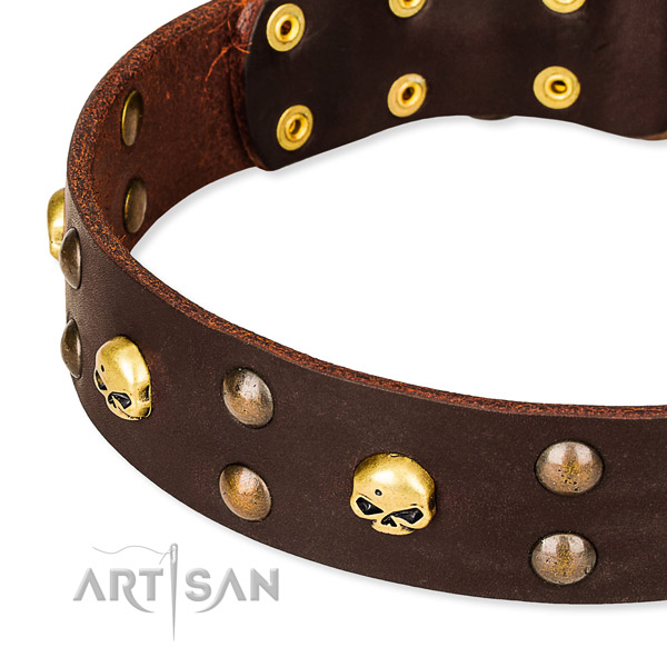 NaturalAwesome leather dog collar for safe pet control