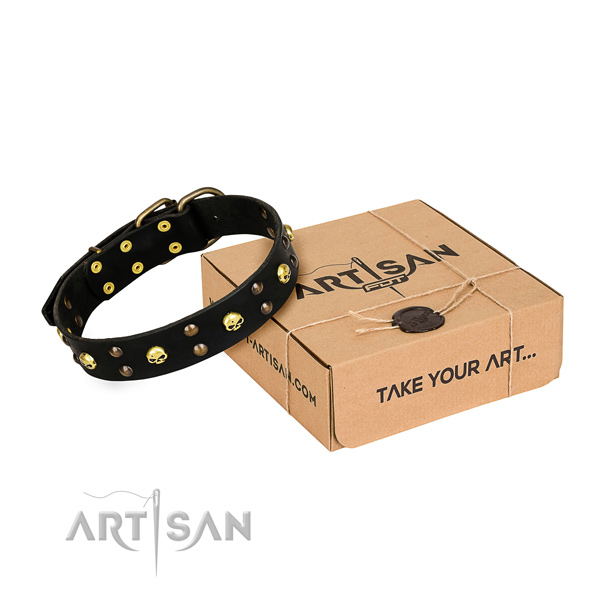 Casual leather dog collar with fashionable adornments